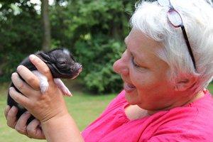 Else Marie Kristensen med en af de små grise