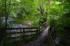 Træbroen under Brende å er et godt sted at e strømfaldene. Foto: MJ